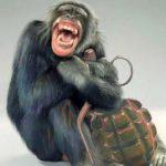 Бандеровец с ядерным реактором хуже обезьяны с гранатой