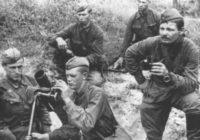 Начало июля 1941 года. Украинская ССР. Расчёт советского 82-мм миномёта на позиции под Киевом,