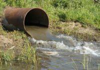 Незаконные стоки канализации привели к эпидемии в Мариуполе