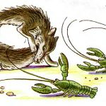 Волки от испуга скушали друг друга.
