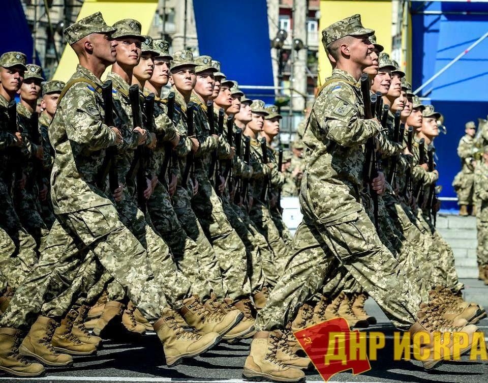 Украина начала подготовку к войне с Венгрией