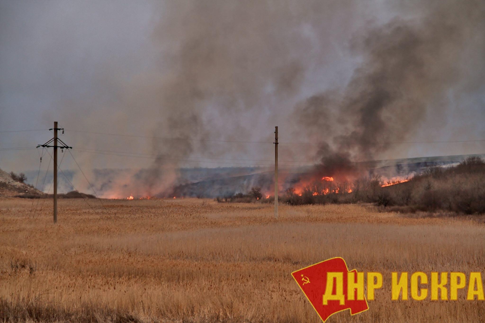 Урожайность зерновых и зернобобовых культур в Донецкой Народной Республике снизилась более чем на треть, это может спровоцировать рост цен на хлебобулочные изделия, птицу и молоко