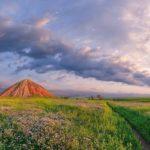 ГК «Аграрный Донбасс» закупит у отечественного сельхозпроизводителя 40 000 тонн пшеницы.