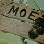 Госдума готовит закон о грибах
