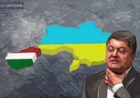 Как и почему Украина сама отрезает от себя целый регион. Закарпатье ждет воссоединения с Венгрией