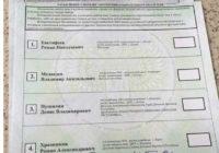 «Выборы» в ДНР превратили в базар, население голосует за Чака Норриса