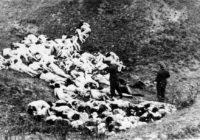 14 ноября 1942 года. Симферополь. Из дневника Хрисанфа Гавриловича Лашкевича (ФОТО +18)