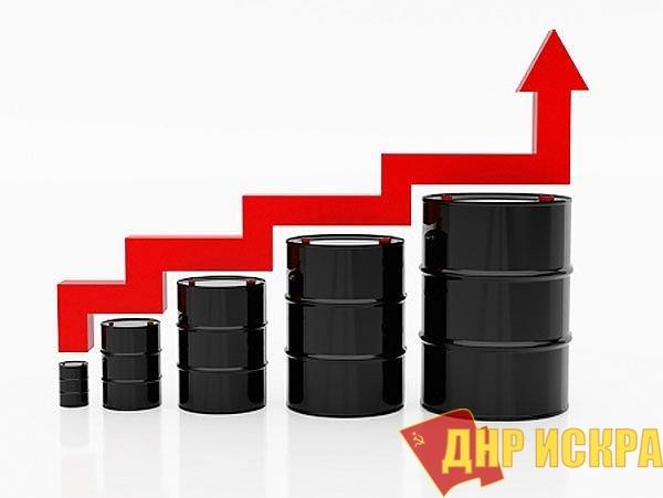 Эффективные менеджеры у власти: в России ожидается дефицит бензина
