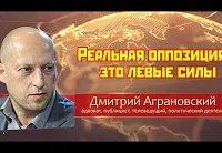 Дмитрий Аграновский и Сергей Удальцов: Реальная оппозиция - это левые силы (Видео)