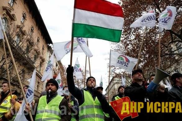 Всубботу, 8 декабря, вБудапеште тысячи венгров протестовали против предложенного нового законопроекта отруде
