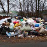 В Госдуму из Красноярска отправили мусор
