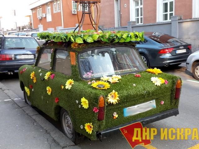 Новости ПКРМ. Новая закупка Президентуры: Цветы, которые дороже, чем машины, купленные в конце прошлого года