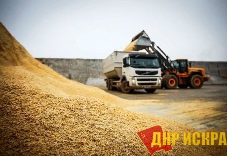 В России разворачивается забастовка перевозчиков зерна