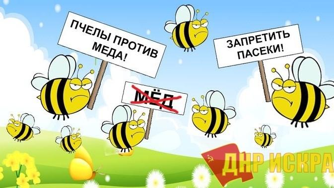 «Пчёлы против мёда». Депутат подвёл итоги борьбы с коррупцией