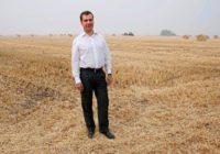 Один из крупнейших зерновых терминалов в России продадут ВТБ