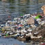 Всего 1% россиян доволен экологией