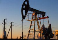 Профессор Катасонов: При нынешней власти Россия так и останется страной-бензоколонкой