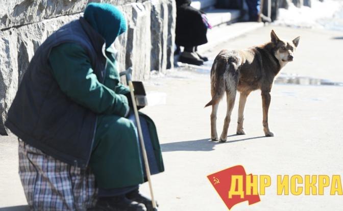 Кремлевские реформаторы борьбу с бедностью превратили в борьбу с бедными