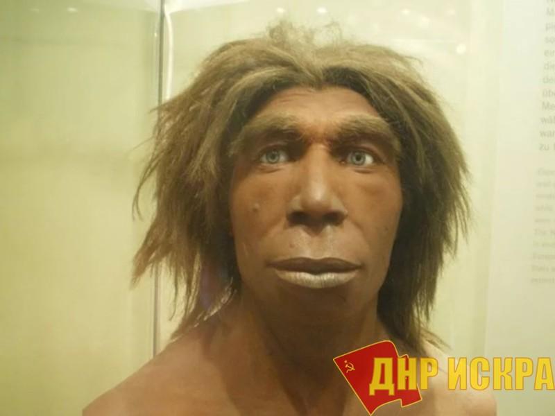 Реконструкция неандертальца из музея естественной истории в Берлине.