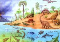 История развития растительного и животного мира