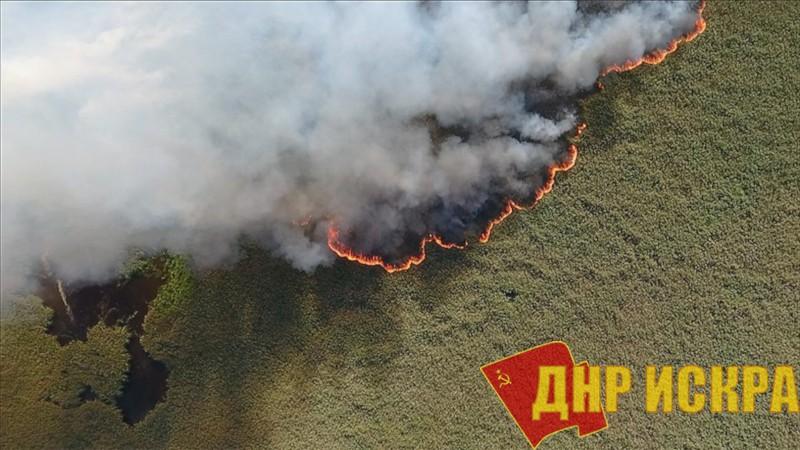 Сибирь постепенно охватывает пламя лесных пожаров