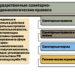 О «законности» карантина и «математических моделях» развития эпидемий