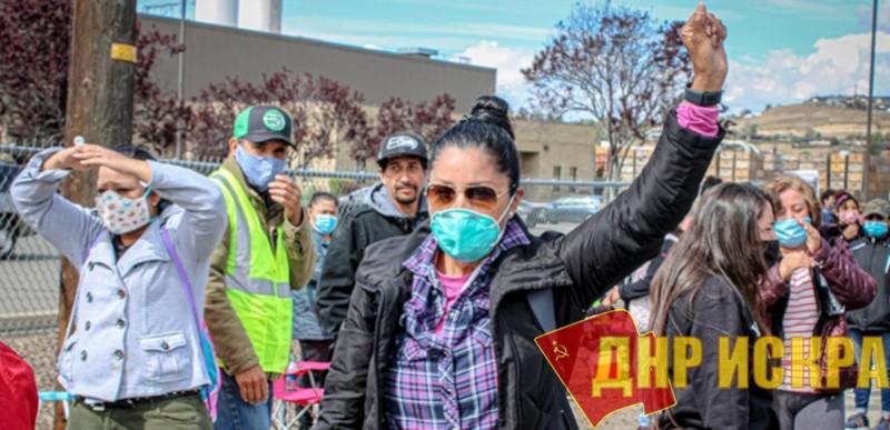 В штате Вашингтон бастуют сортировщики и упаковщики яблок