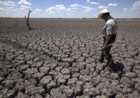 Хищническое земледелие в США