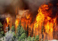 Беда не приходит одна. Россия снова задыхается от лесных пожаров