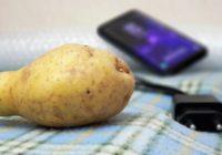 Цены вырастут на всё: от мобильной связи до картошки. Зарплаты почему-то не растут