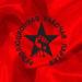 Резолюция Московской конференции РРП