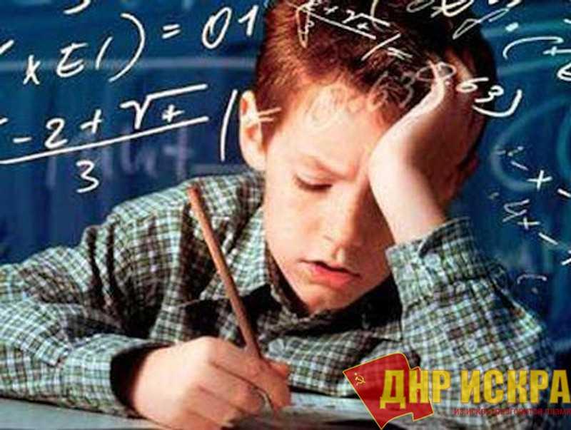 Массовый провал: четверть выпускников 9-х классов завалили экзамен по математике