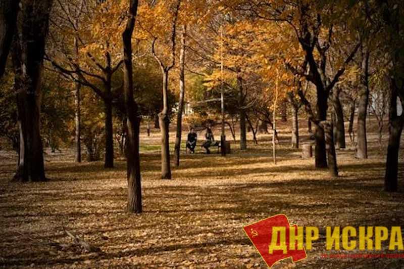 Прислужники «Святой Матроны» против парка для Донецких детей